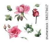 Stock photo flowers and leaves watercolor can be used as greeting card invitation card for wedding birthday 582173617