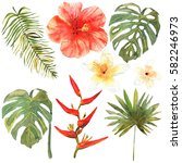 floral set. collection with... | Shutterstock . vector #582246973