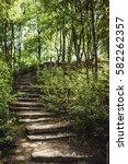 natural texture | Shutterstock . vector #582262357
