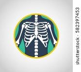 chest x ray vector logo icon...   Shutterstock .eps vector #582397453
