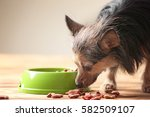 Cute Little Pet And Bowl With...