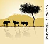 african landscape flora and... | Shutterstock . vector #582528277