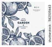 pomegranate fruit vintage... | Shutterstock .eps vector #582535663