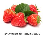 strawberries with leaves. | Shutterstock . vector #582581077