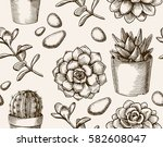 cactus seamless pattern.... | Shutterstock .eps vector #582608047