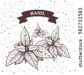 basil. herb and spice label.... | Shutterstock .eps vector #582732583
