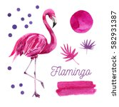flamingos and branches ... | Shutterstock . vector #582931387