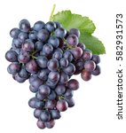 purple grapes isolated on a... | Shutterstock . vector #582931573