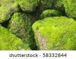 Coastal Background Texture Of...