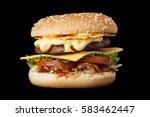 A Delicious Burger Isolated O...