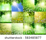 forest trees leaf. nature green ... | Shutterstock . vector #583485877