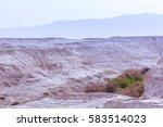 desert arid valley with little... | Shutterstock . vector #583514023