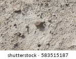 white arid cracked lumpy dry... | Shutterstock . vector #583515187