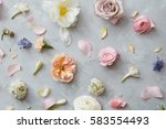 background of flowers | Shutterstock . vector #583554493