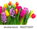 Pink And Purple Hyacinths With...