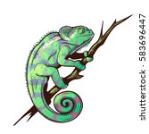chameleon on a branch colored... | Shutterstock .eps vector #583696447
