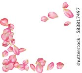 spring flower petals blossoms... | Shutterstock .eps vector #583817497