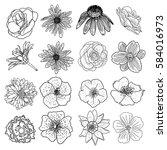 vector set of flowers  black... | Shutterstock .eps vector #584016973