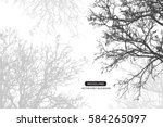 trees and branches silhouette... | Shutterstock .eps vector #584265097