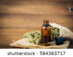 essential oil made from... | Shutterstock . vector #584383717