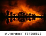 Forest Fire  Wildfire. Night...