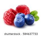 Raspberry With Blueberry. Wild...