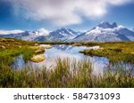 views of the mont blanc glacier ... | Shutterstock . vector #584731093