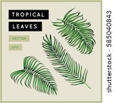 tropical palm leaves set.... | Shutterstock .eps vector #585040843