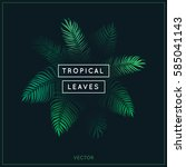 Tropical Leaves. Exotic Tree...