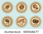 colorful fresh nuts round... | Shutterstock .eps vector #585068677