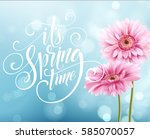 Gerbera Flower Background And...
