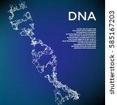 plexus dna concept. vector mesh.... | Shutterstock .eps vector #585167203