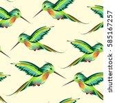 tropical green bird hummingbird ... | Shutterstock .eps vector #585167257