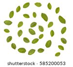 green leaves arranged in spiral ... | Shutterstock . vector #585200053
