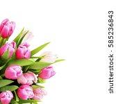 pink tulip flowers bouquet in a ... | Shutterstock . vector #585236843