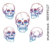 colorful skull collection.... | Shutterstock .eps vector #585595127