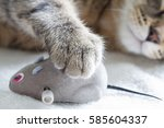 Sleepy Cat And Mouse Toy On...