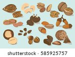 colorful natural organic nuts... | Shutterstock .eps vector #585925757