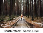 man hiking in pine tree forest... | Shutterstock . vector #586011653