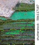 carpet | Shutterstock . vector #586117187