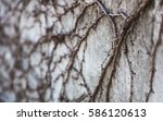 on the wall | Shutterstock . vector #586120613
