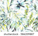 natural leaves exotic... | Shutterstock . vector #586209887
