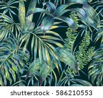 natural leaves exotic... | Shutterstock . vector #586210553