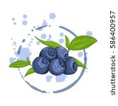 bilberry isolated on a white... | Shutterstock .eps vector #586400957