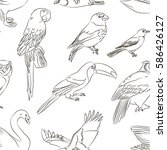 bird collection pattern | Shutterstock .eps vector #586426127