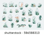 geometric florarium with... | Shutterstock .eps vector #586588313
