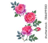 Stock photo watercolor hand painted roses can be used as romantic background for web pages wedding 586699583
