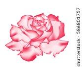beautiful rose flower isolated...   Shutterstock .eps vector #586801757