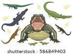 cartoon green crocodile danger... | Shutterstock .eps vector #586849403