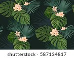 exotic coral tropical flowers... | Shutterstock .eps vector #587134817